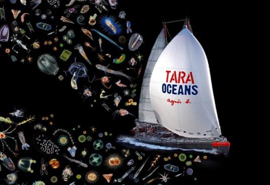 Tara Oceans Climate Hotel Ticati Plankton