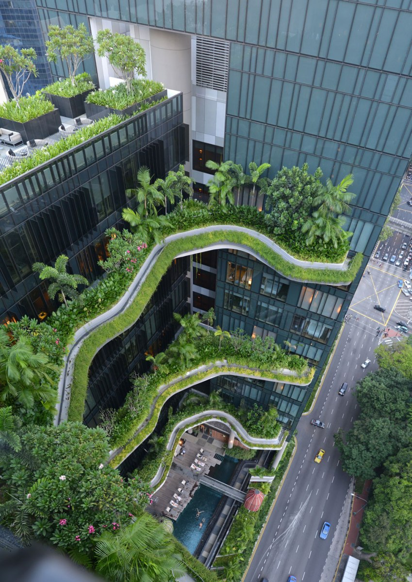 Amazing sky garden in the urban jungle