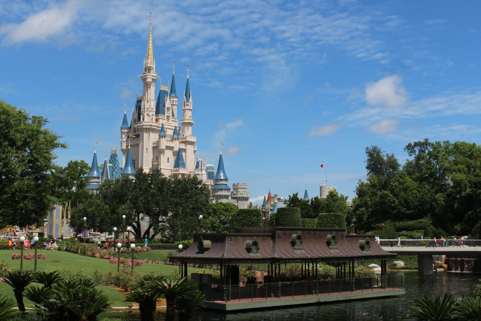 walt-disney-world-239144