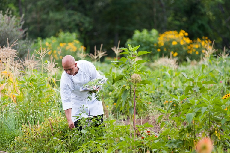 Organic kitchen garden of Farm-to-Table Restaurant @ Winvian Farm