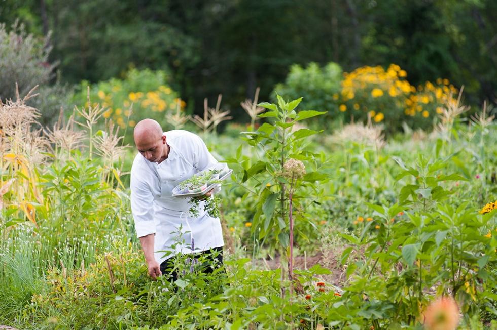 Organic kitchen garden of Farm-to-Table Restaurant @ Winvian Farm